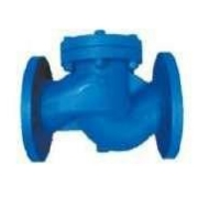 Check valve lifting flange Fig. C104