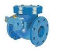 Check valve with counterweight Fig. C107